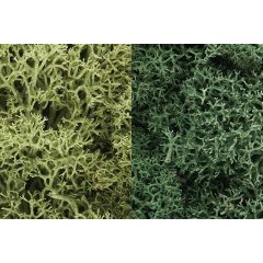 Lichen Woodland scenics Light Green Mix L167