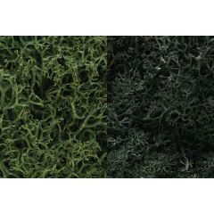 Lichen Woodland scenics Dark Green Mix L168