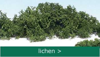 order lichen at englishmodelrailways.shop